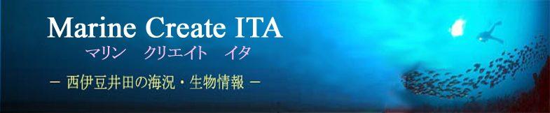 Marine Create ITA